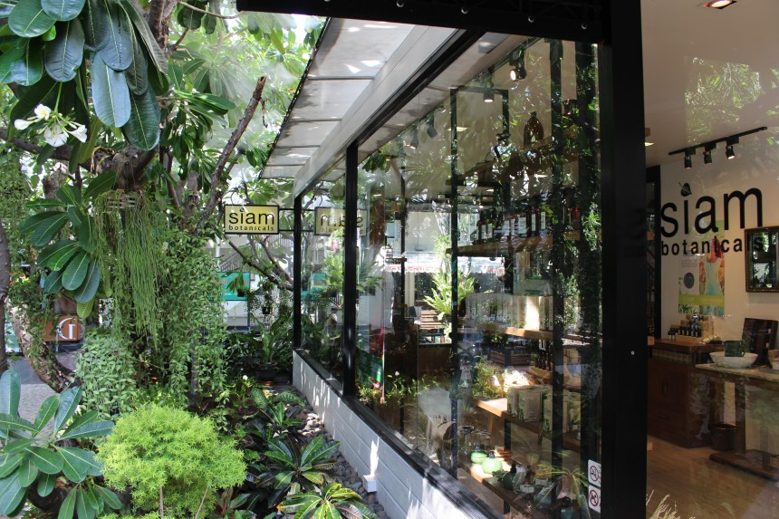 Shop windows with greenery